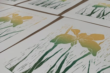 Evening Printmaking Course | Technique Focused | Two Parts