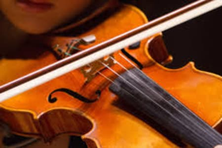 Viola Lessons for Any Level