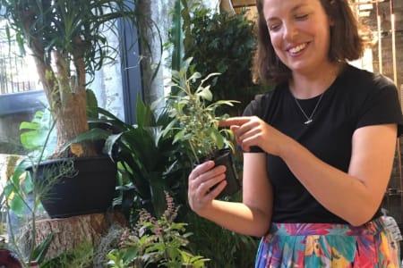 Herb growing talk & plenty of herby tasters