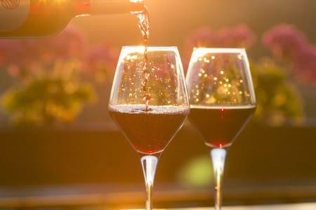 One-day Spanish Wine School