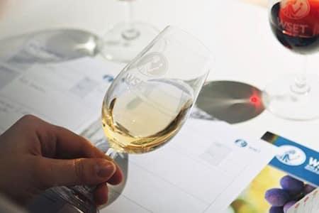 WSET Level 1 in Wines