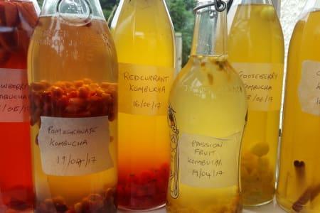 Kombucha - First Brews, Secondary Ferments