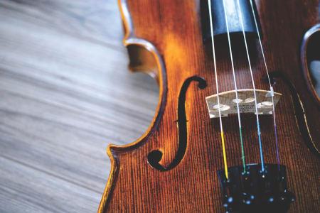 Violin Taster Session