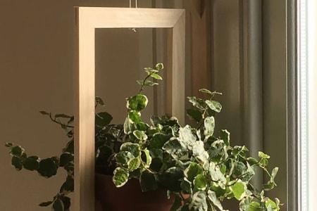 Make a Plant Hanger