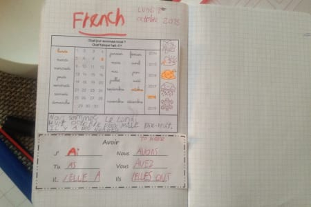 French Lessons with an Experienced French Teacher