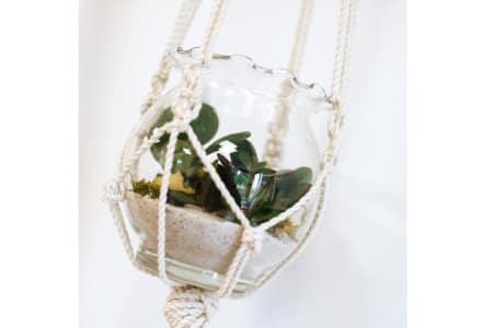 Macrame Class: Plant Hanger