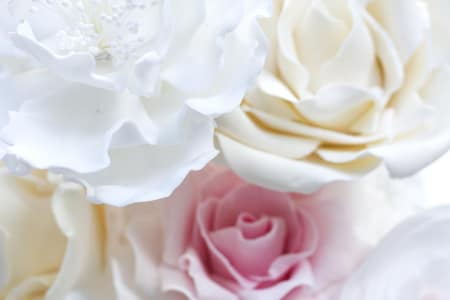 Make Sugar Flowers. Learn how to make peonies and roses to give your cake that wow factor.