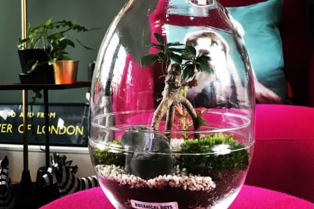 Private Class- Hand-made glass egg Terrarium Masterclass