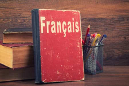 Beginner French Lesson for a Small Group