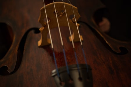 Cello Lessons for Any Level