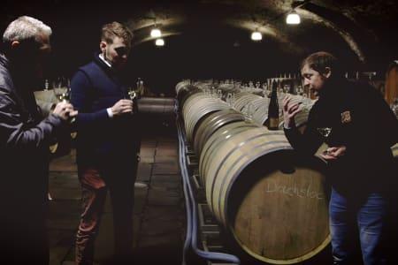Saturday Wine School: WSET Level 2