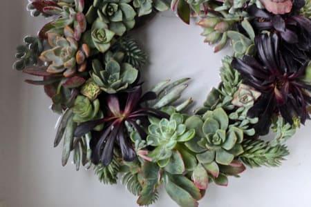 Succulent Wreath Making Workshop- Group class