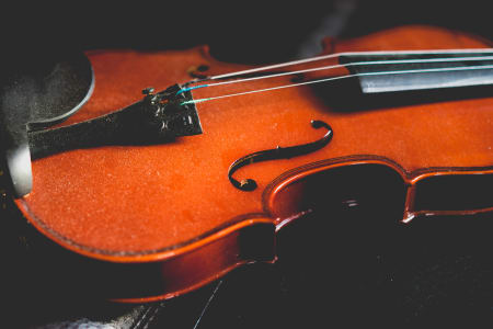 Violin Lessons for Any Level