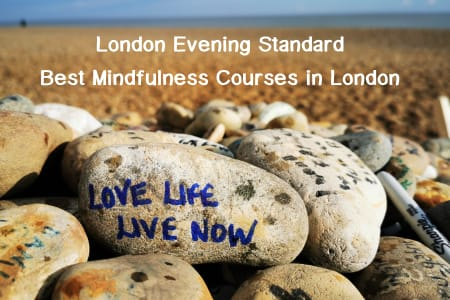 Transformational Mindfulness Course