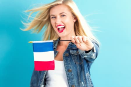 French Course: Advanced Level