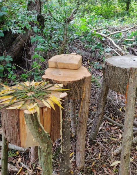 Forest Club - Spoon Carving by Creative nature HQ - crafts in London