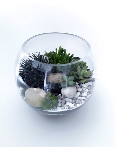 Succulent Terrarium Workshop by Heron Hawker - crafts in London