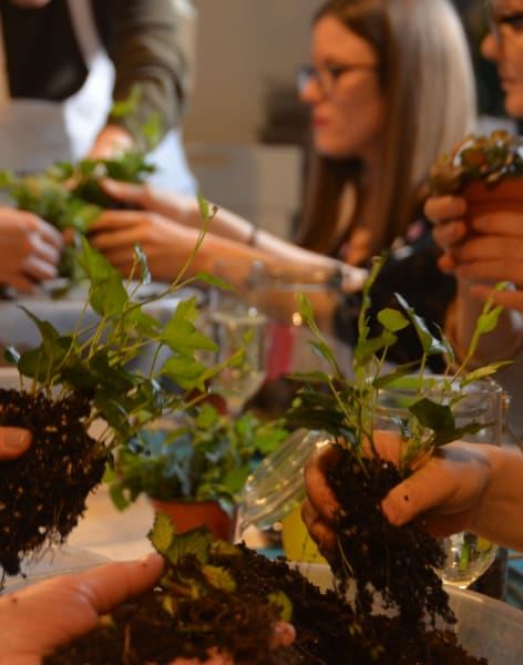 Terrarium Masterclass at Canopy Market, Kings Cross by Botanical Boys - crafts in London