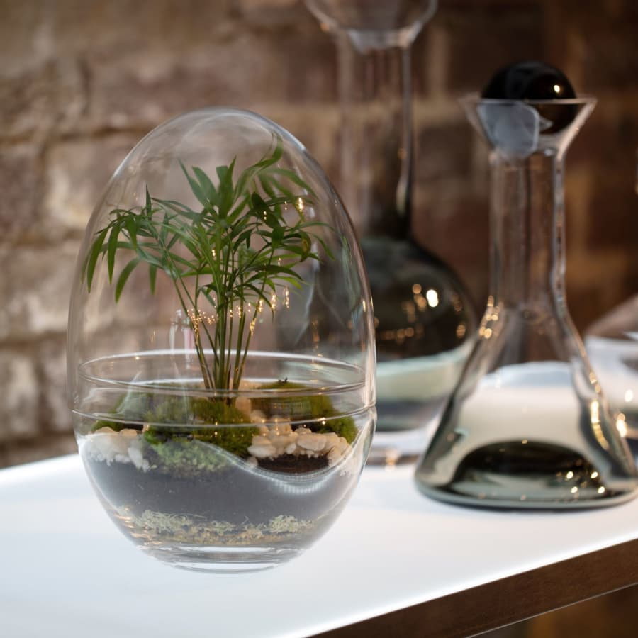 Handcraft a Terrarium Eco-System At Tom Dixon Workshop by Botanical Boys - crafts in London