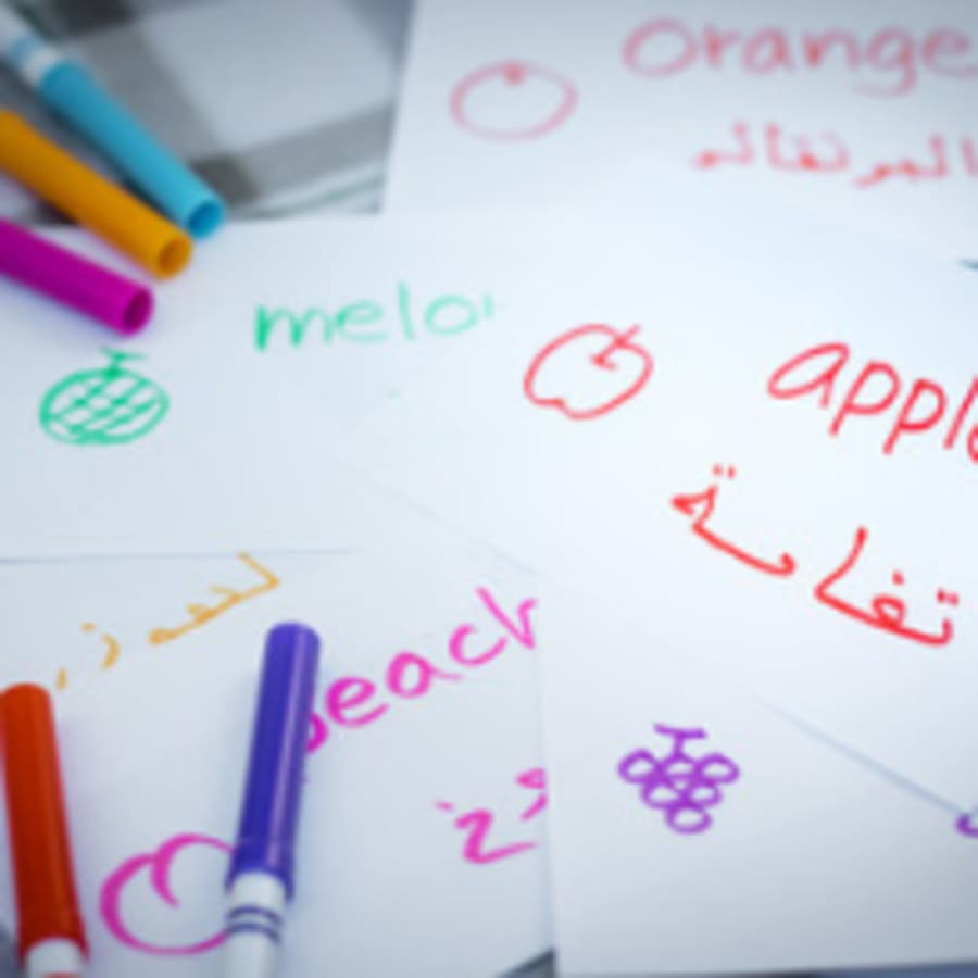 Syrian Dialect Tutoring by Kotaiba Private Tutor - languages in London
