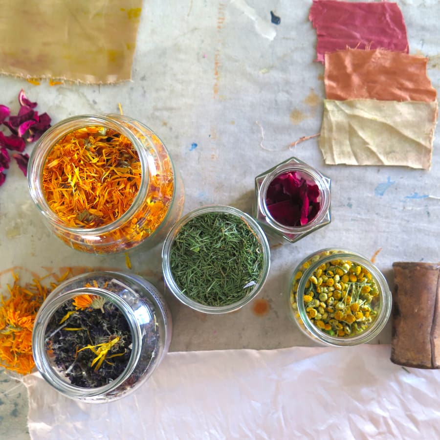 Wild Colour Foraging Walk by London Craft Club - crafts in London