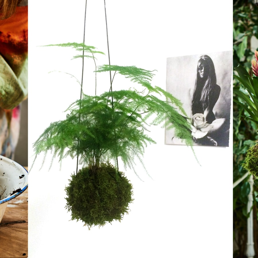 Private Class: Kokedama Class by Alyson Mowat Studio - crafts in London