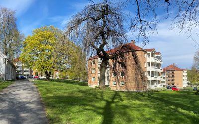 Teisen Park Borettslag