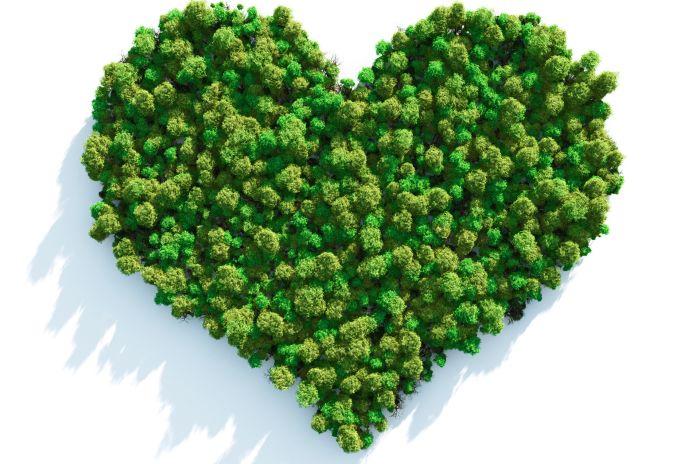 Gröna träd syns uppifrån i form av ett hjärta.