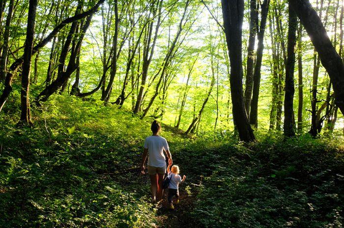 Mor og datter på tur i skogen