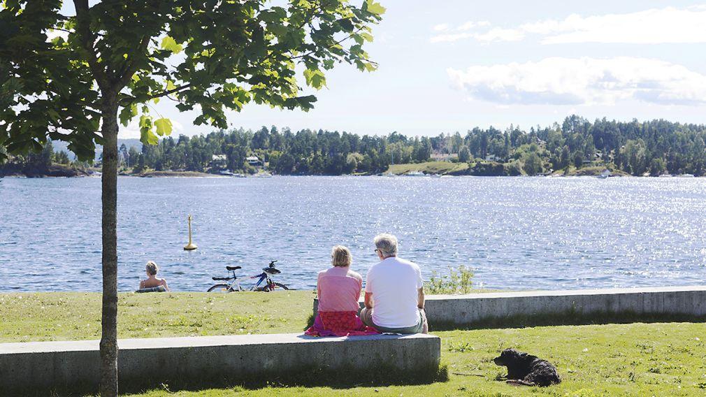 Bilde som viser mennesker som nyter utsikten over sjøen
