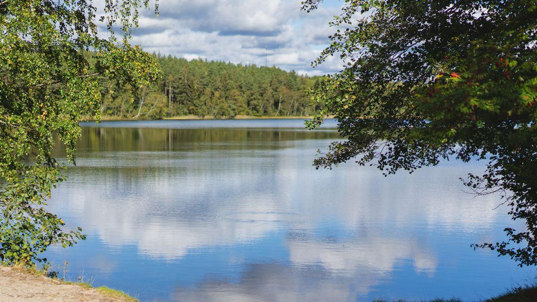 En sjö i Torsviken