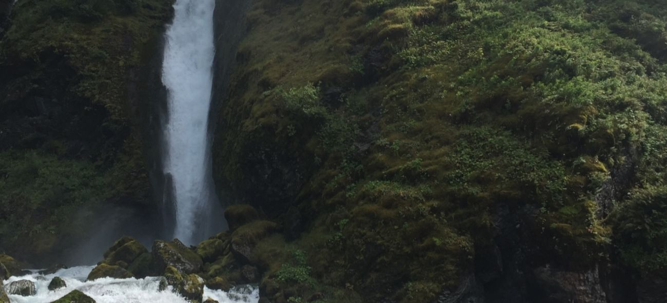 Bilde av frodig skog og et fossefall