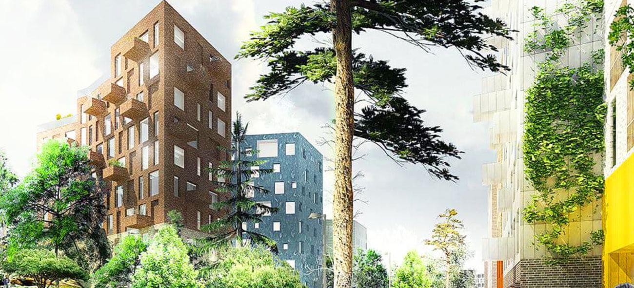 ett träd framför två höghus