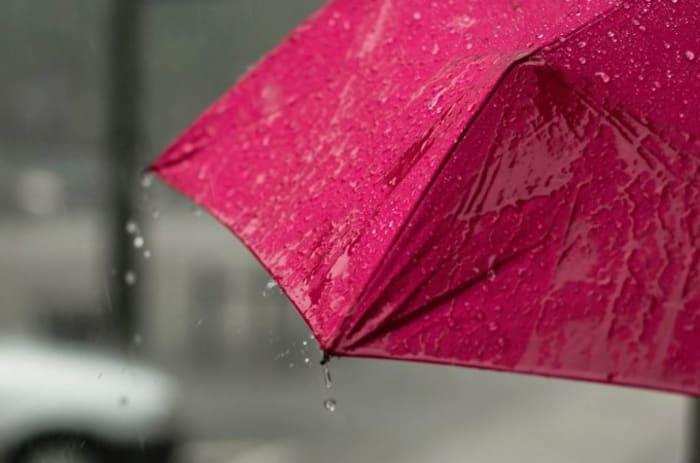En rosa paraply-regn som drypper