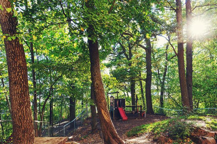 Et lekeapparat blant masse trær.