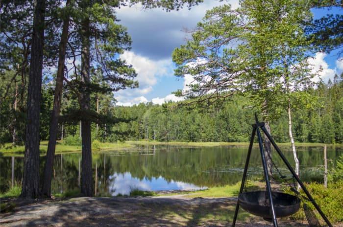 Bilde fra Vesledammen