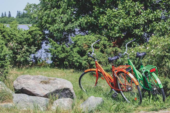 två cyklar parkerade i en skog