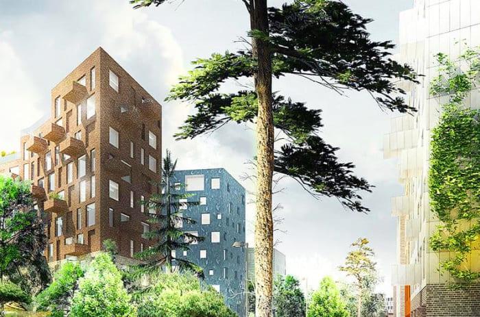 stort träd framhör höga lägenhetshus