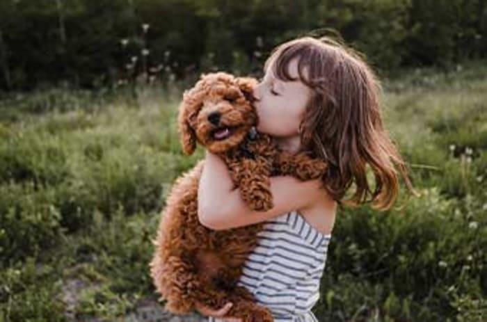 Ung jente holder rundt en brun hund.