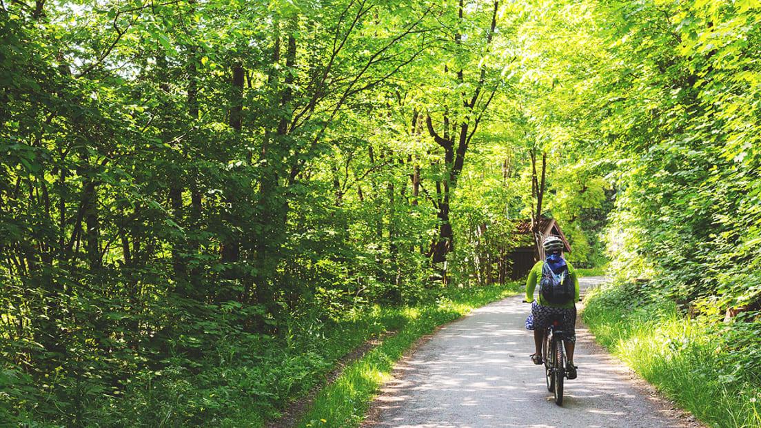 Bilde av syklist på grusvei i grønne omgivelser