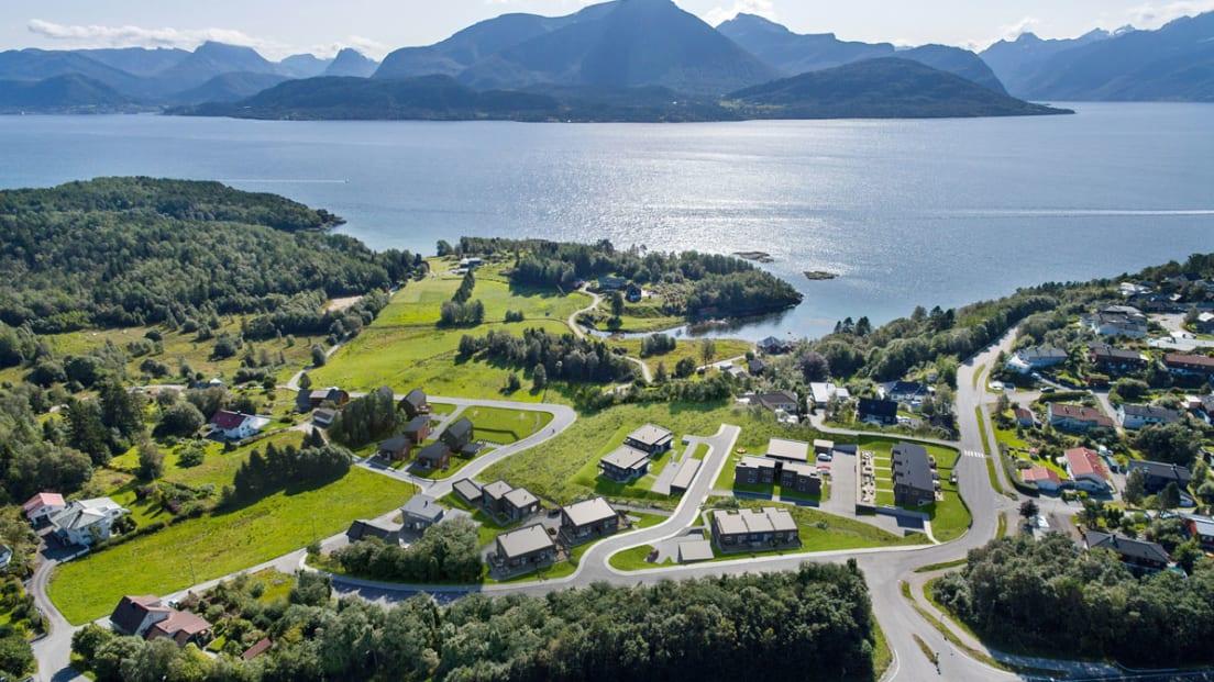 Bilde fra Emblemsvågen i Ålesund