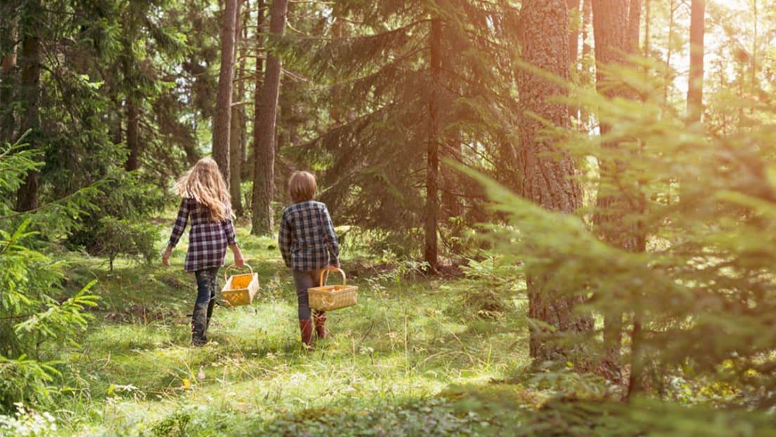 Foto av to barn i skogen