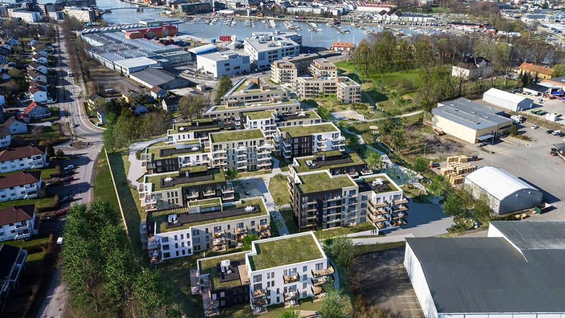 Oversiktsillustrasjon av alle husene i Teiepark på sommertid.