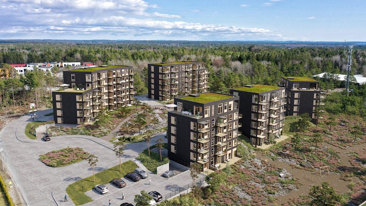 Oversiktsbilde av fem bygg med flere uterom, parkeringsplass og skog i boligprosjektet Furukrona.