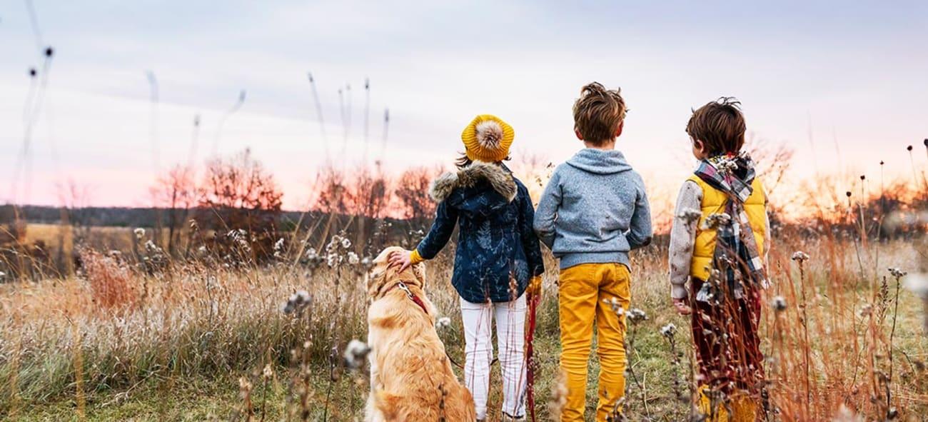Tre barn og en hund ser ut over en åker