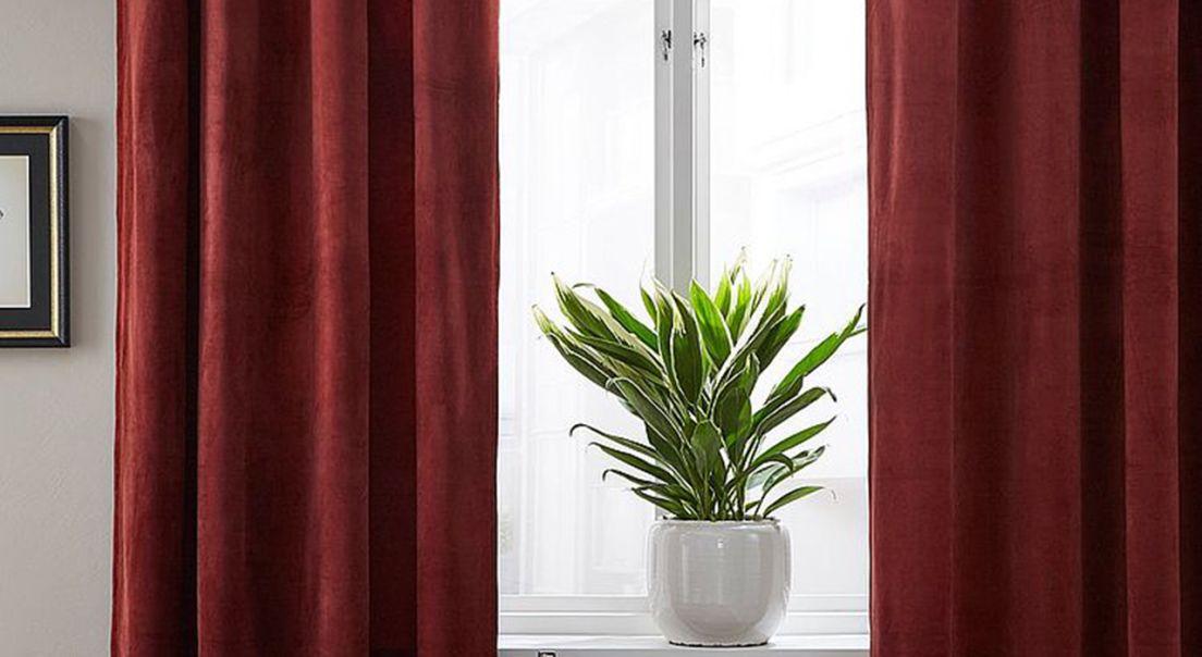 Stuevindu med røde gardiner og en grønn plante i vinduskarmen