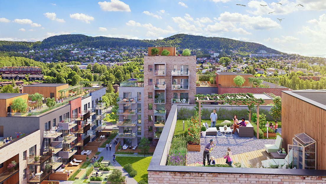 Bilde av Frysjaparken og en takterrasse.