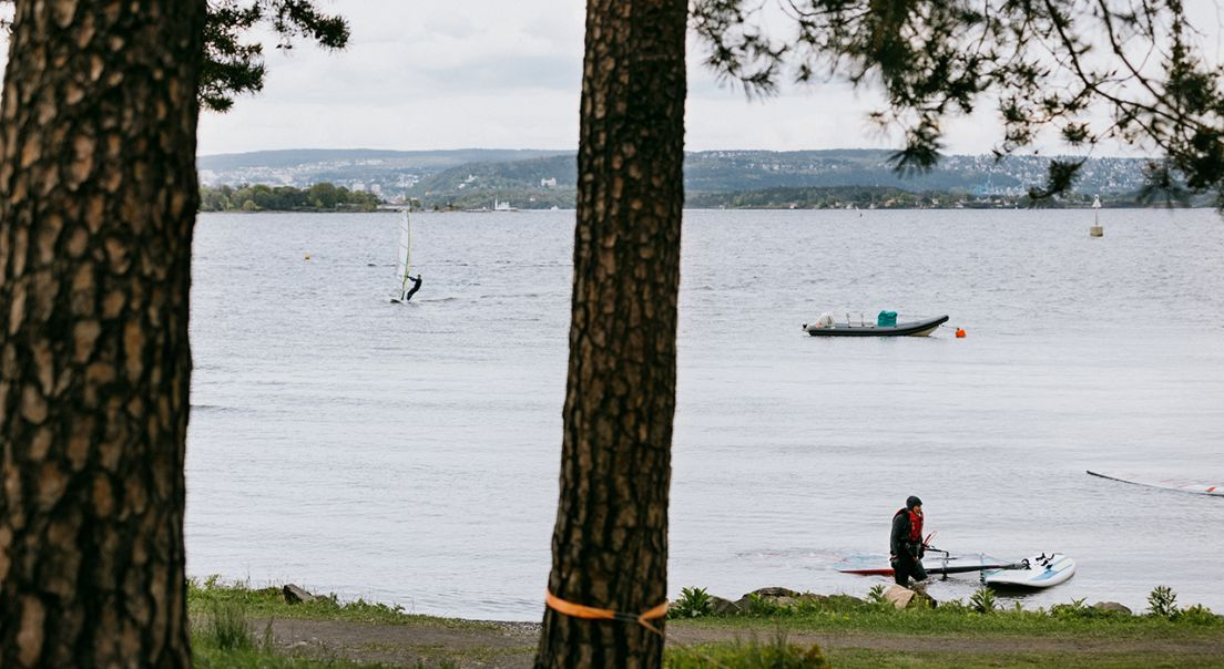 Utsikten på Fornebu av vannet, sett mellom trærne.