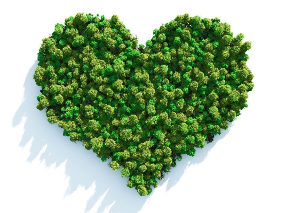 ett hjärta format av skog