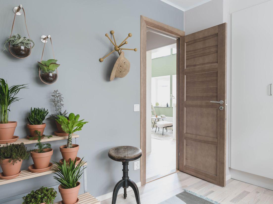 växter inomhus mot en vägg